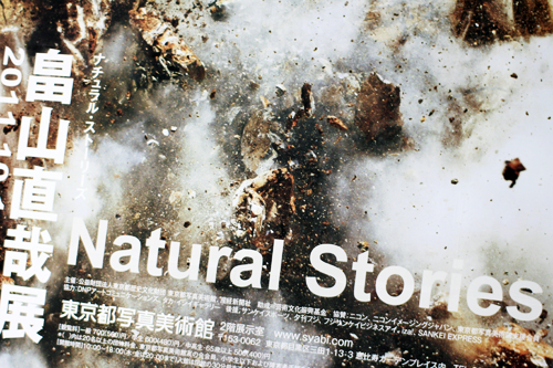 natural-stories-hatayama